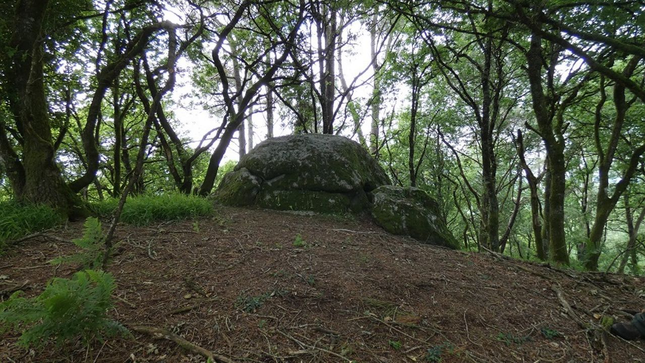 Novedades en arqueología castreña en Galicia. Musealizaciones y hasta descubrimientos de castros