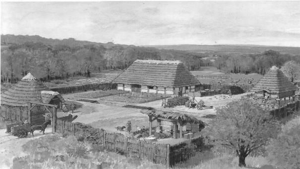 El yacimiento de Le Clos Maillard, descubriendo una explotación agrícola celta