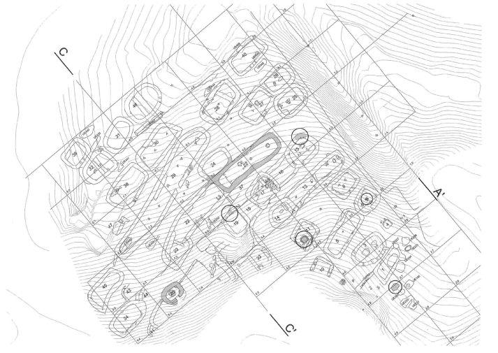 Planta del castro de Cociñadoiro. Imagen Plan del Centro de Interpretación de Punta Langosteira